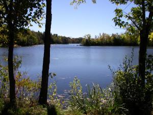 Manchester Mill Pond